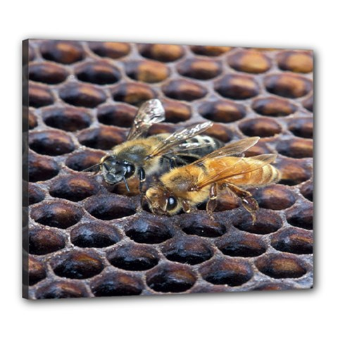 Worker Bees On Honeycomb Canvas 24  x 20