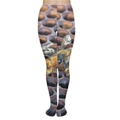 Worker Bees On Honeycomb Women s Tights