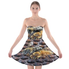 Worker Bees On Honeycomb Strapless Bra Top Dress
