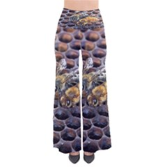 Worker Bees On Honeycomb Pants