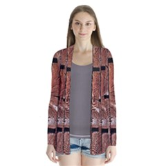 Wood Logs Wooden Background Cardigans