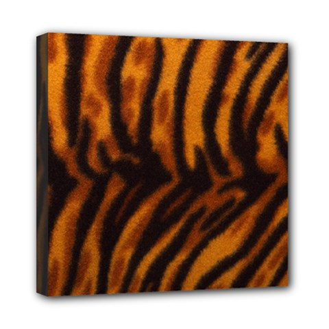 Animal Background Cat Cheetah Coat Mini Canvas 8  X 8