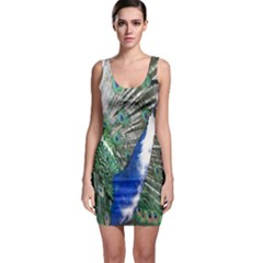 Animal Photography Peacock Bird Sleeveless Bodycon Dress