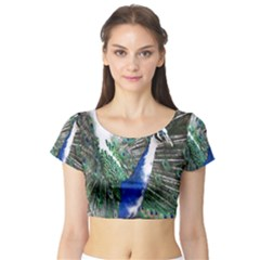 Animal Photography Peacock Bird Short Sleeve Crop Top (tight Fit)