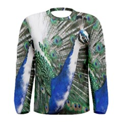 Animal Photography Peacock Bird Men s Long Sleeve Tee
