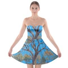 Turkeys Strapless Bra Top Dress
