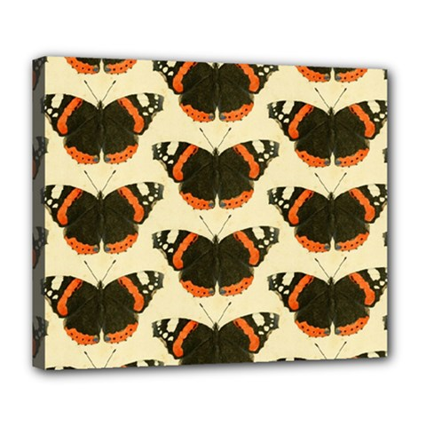 Butterfly Butterflies Insects Deluxe Canvas 24  X 20