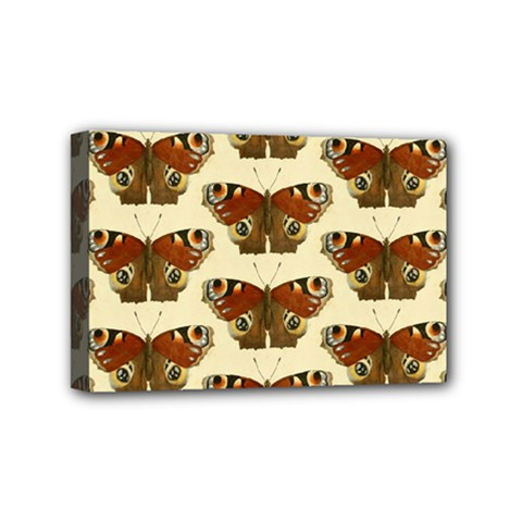 Butterfly Butterflies Insects Mini Canvas 6  x 4
