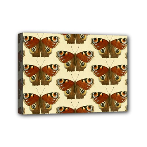 Butterfly Butterflies Insects Mini Canvas 7  x 5
