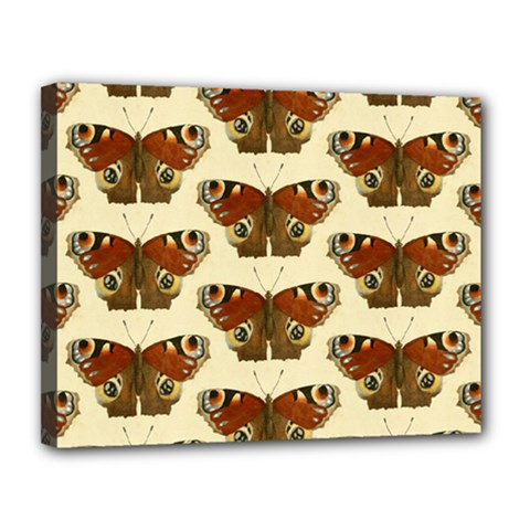 Butterfly Butterflies Insects Canvas 14  X 11
