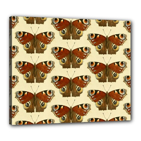 Butterfly Butterflies Insects Canvas 24  X 20