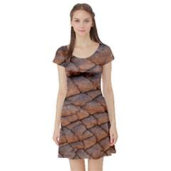 Elephant Skin Short Sleeve Skater Dress