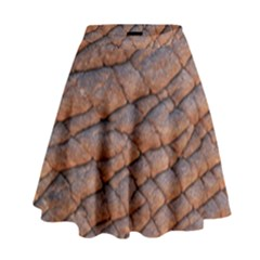 Elephant Skin High Waist Skirt