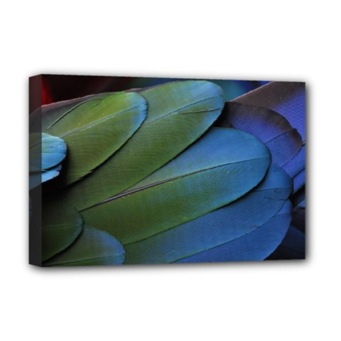 Feather Parrot Colorful Metalic Deluxe Canvas 18  X 12