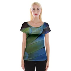 Feather Parrot Colorful Metalic Women s Cap Sleeve Top