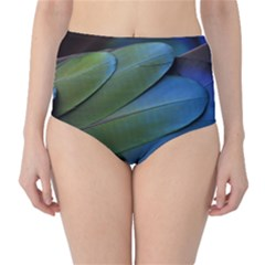 Feather Parrot Colorful Metalic High Waist Bikini Bottoms