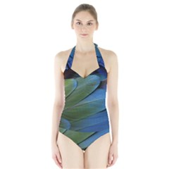 Feather Parrot Colorful Metalic Halter Swimsuit