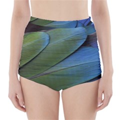 Feather Parrot Colorful Metalic High Waisted Bikini Bottoms