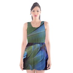 Feather Parrot Colorful Metalic Scoop Neck Skater Dress