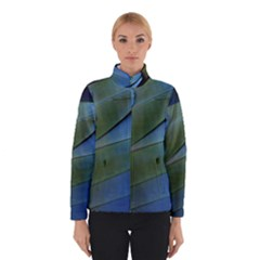 Feather Parrot Colorful Metalic Winterwear