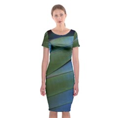 Feather Parrot Colorful Metalic Classic Short Sleeve Midi Dress