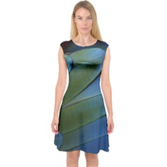 Feather Parrot Colorful Metalic Capsleeve Midi Dress