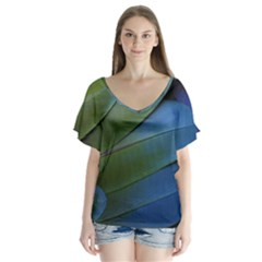 Feather Parrot Colorful Metalic Flutter Sleeve Top