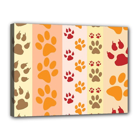 Paw Print Paw Prints Fun Background Canvas 16  X 12