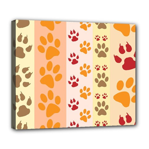 Paw Print Paw Prints Fun Background Deluxe Canvas 24  X 20