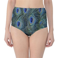 Peacock Feathers Blue Bird Nature High Waist Bikini Bottoms