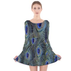 Peacock Feathers Blue Bird Nature Long Sleeve Velvet Skater Dress