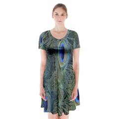 Peacock Feathers Blue Bird Nature Short Sleeve V Neck Flare Dress