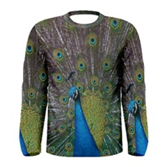 Peacock Feather Beat Rad Blue Men s Long Sleeve Tee