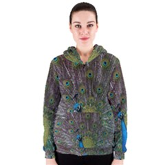 Peacock Feather Beat Rad Blue Women s Zipper Hoodie