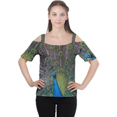 Peacock Feather Beat Rad Blue Women s Cutout Shoulder Tee