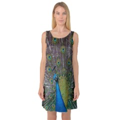 Peacock Feather Beat Rad Blue Sleeveless Satin Nightdress