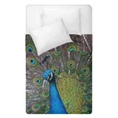 Peacock Feather Beat Rad Blue Duvet Cover Double Side (single Size)