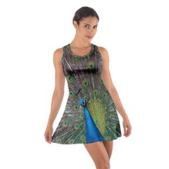 Peacock Feather Beat Rad Blue Cotton Racerback Dress