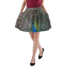 Peacock Feather Beat Rad Blue A Line Pocket Skirt