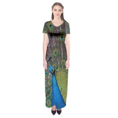 Peacock Feather Beat Rad Blue Short Sleeve Maxi Dress