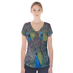 Peacock Feather Beat Rad Blue Short Sleeve Front Detail Top