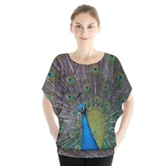 Peacock Feather Beat Rad Blue Blouse
