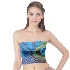 Peacock Feather Blue Green Bright Tube Top