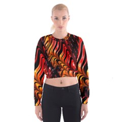 Abstract Fractal Mathematics Abstract Women s Cropped Sweatshirt