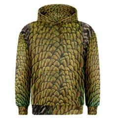 Peacock Bird Feather Gold Blue Brown Men s Pullover Hoodie