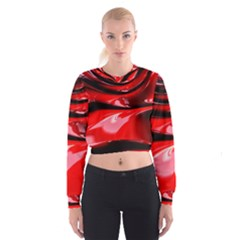 Red Fractal Mathematics Abstract Women s Cropped Sweatshirt