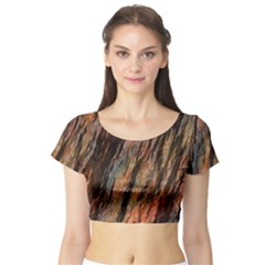 Texture Stone Rock Earth Short Sleeve Crop Top (tight Fit)
