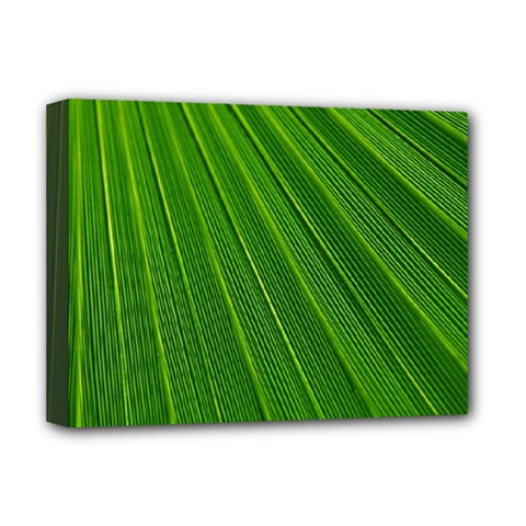 Green Lines Macro Pattern Deluxe Canvas 16  X 12