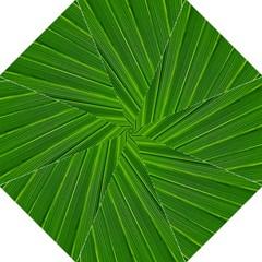 Green Lines Macro Pattern Hook Handle Umbrellas (Large)