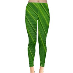 Green Lines Macro Pattern Leggings